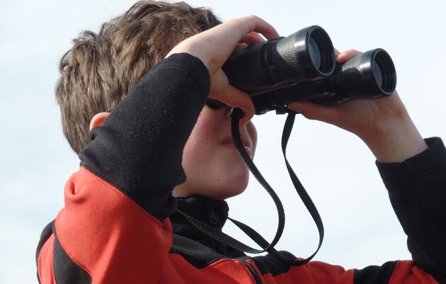 Youth Winter Bird Count