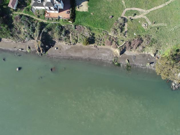 Using Drones to Survey Waterbirds in Richardson Bay