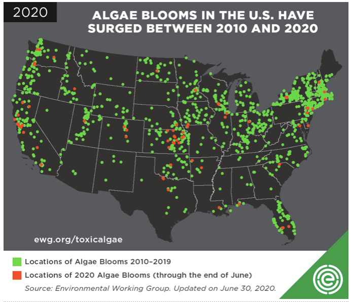 algae bloom map 2020
