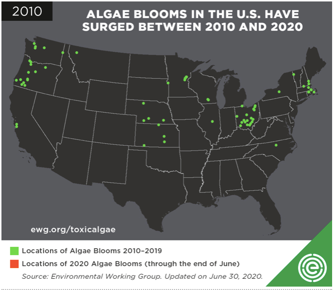 algae bloom map 2010