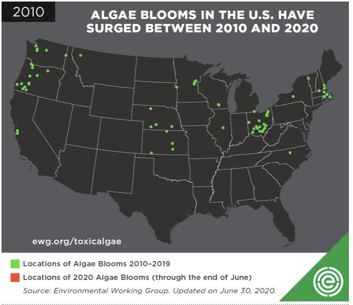 algae bloom map 2010