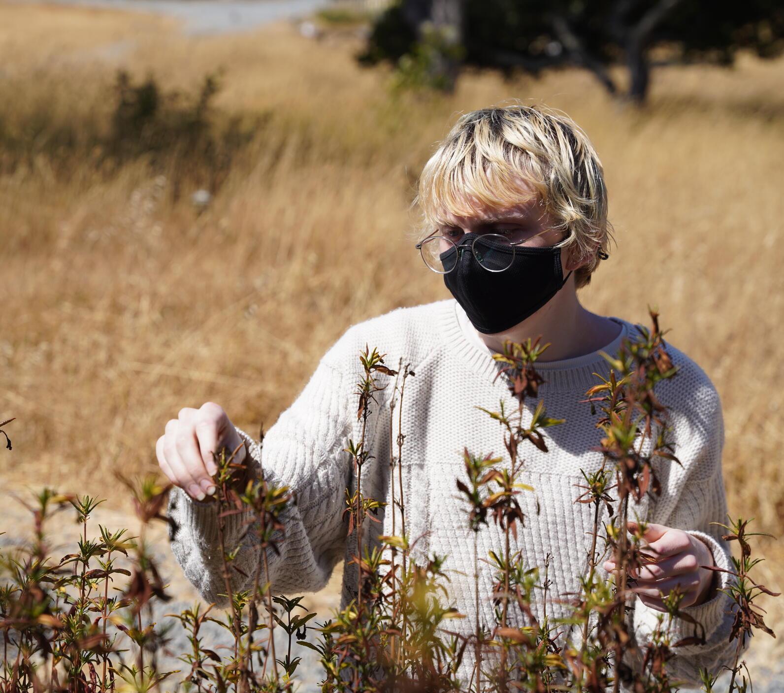 Arcadia Thompson Picking Flower Seeds