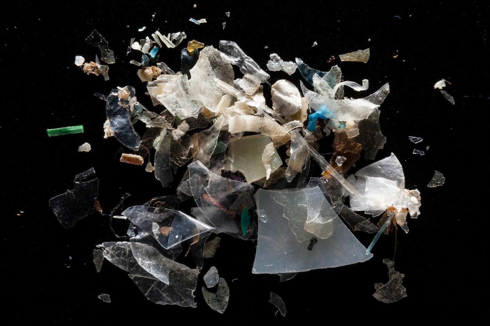 Microplastics in the Chesapeake Bay Watershed